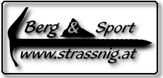 halbtransparentes strassnig.at Logo
