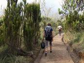 Machame Gate - Machame Camp
